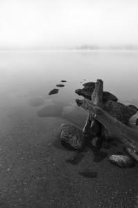 Morning Mist on 4th by Carolynn McCann