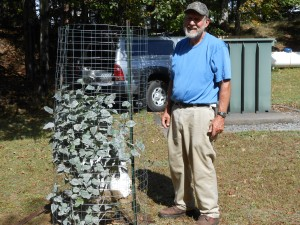 Garden Club member, Gary Lee planted the lilacs in Mary Diamond's memory