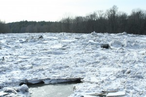 Ice jams at Ausable River. Photo by Ellie George